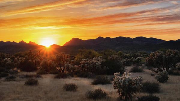 Wall Art - Photograph - Sunset Splendor  by Saija Lehtonen