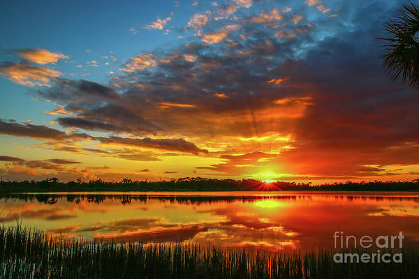 Photograph - Sunset Sunburst by Tom Claud