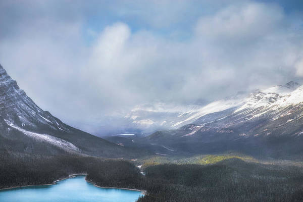 Peyto Lake Wall Art - Photograph - Sunshine At Peyto Lake No 1 by Chris Fletcher