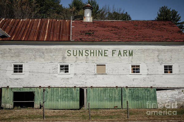 Wall Art - Photograph - Sunshine Farm by Edward Fielding