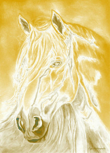 Wall Art - Painting - Sunshine Horse by Faye Anastasopoulou