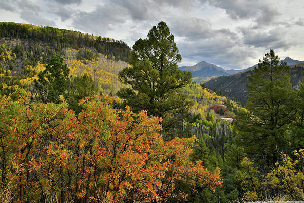 Photograph - Sunshine Mountain And Fall Colors From Highway 145 by Ray Mathis