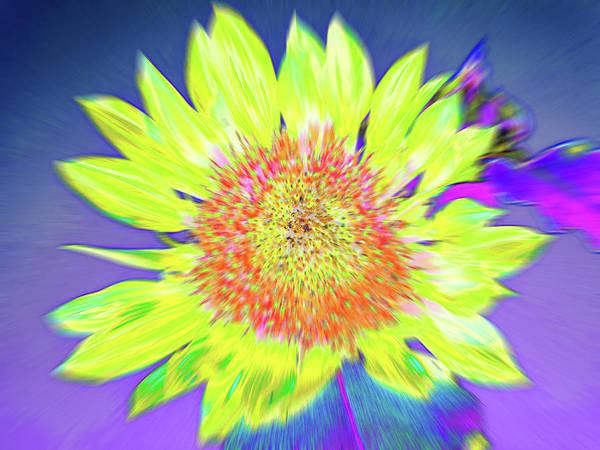 Photograph - Sunspray by Cris Fulton