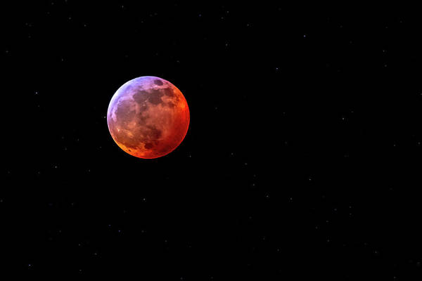 Photograph - Super Blood Wolf Moon by Allin Sorenson