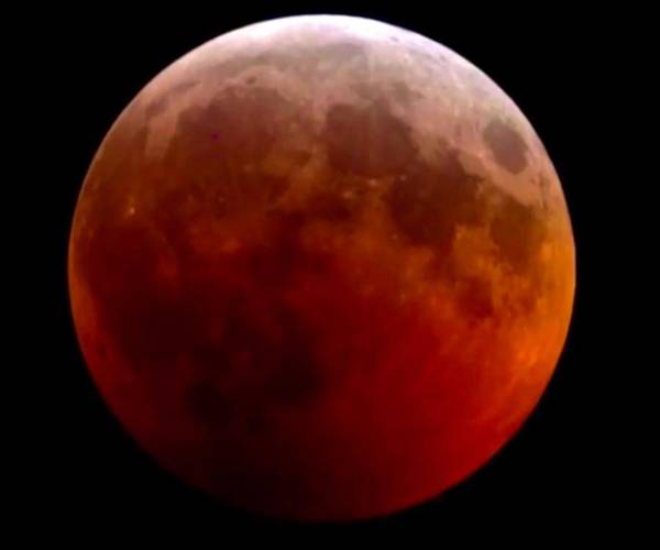 Photograph - Super Blood Wolf Moon by Chris Montcalmo