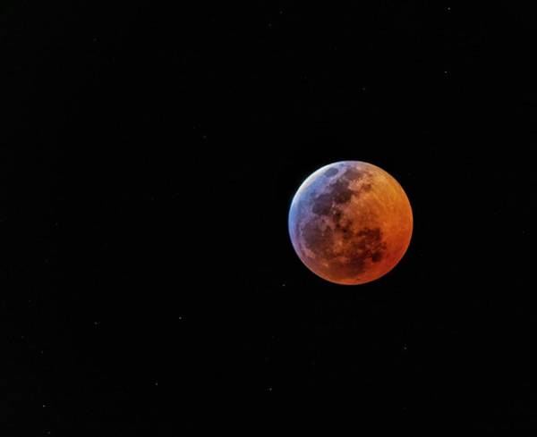 Photograph - Super Blood Wolf Moon by Rand