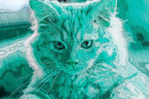 Digital Art - Super Duper Artistic Cat Blue by Don Northup