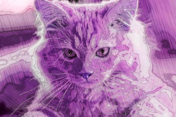Digital Art - Super Duper Artistic Cat Purple by Don Northup