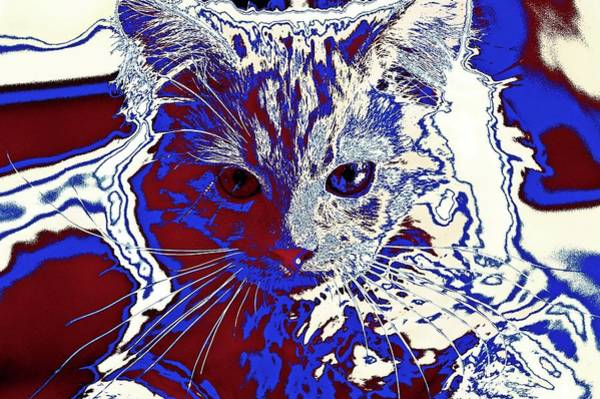 Digital Art - Super Duper Cat Coloring Book by Don Northup