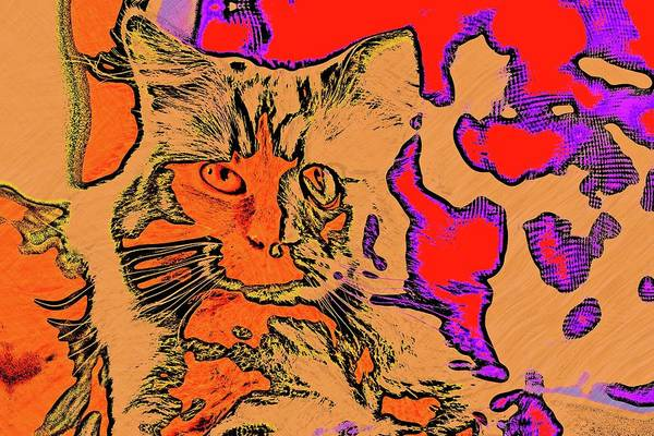 Digital Art - Super Duper Cat Funky Picasso by Don Northup