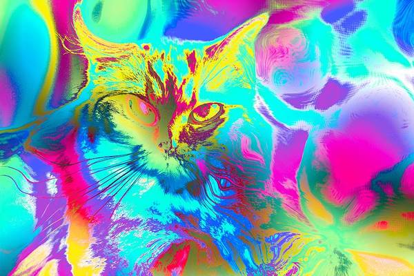 Digital Art - Super Duper Cat Psychedelic by Don Northup