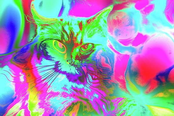 Digital Art - Super Duper Cat Psychedelic Green by Don Northup
