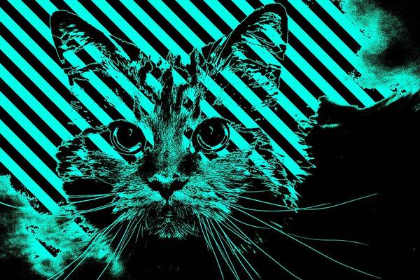 Digital Art - Super Duper Cat Warning Blue by Don Northup