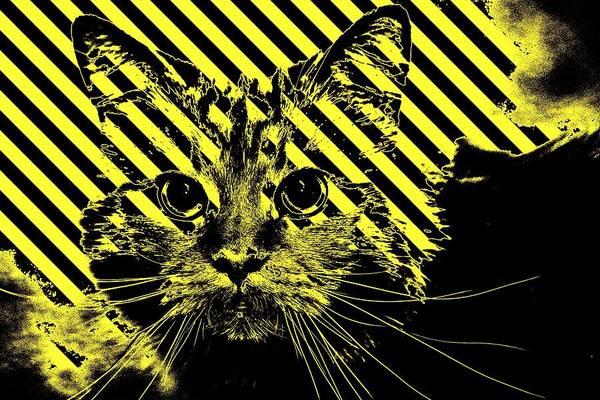 Digital Art - Super Duper Cat Warning by Don Northup