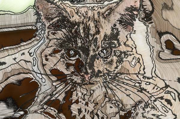 Digital Art - Super Duper Coll Cat Sketch 1 by Don Northup