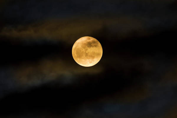 Wall Art - Photograph - Super Moon Seen Through The Clouds by Diane Labombarbe