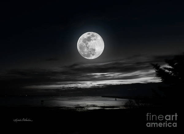 Photograph - Super Worm Equinox Full Moon by Michelle Constantine