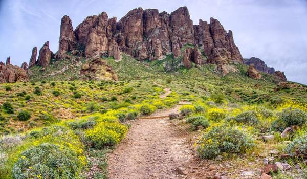 Photograph - Superstition Mountain Yellow Spring Flowers  by Ants Drone Photography