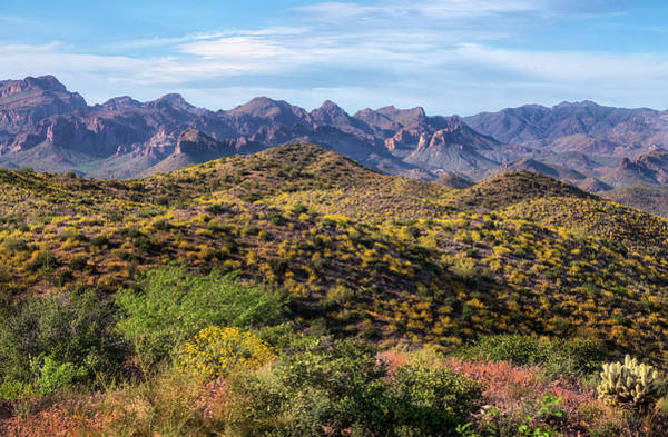 Photograph - Superstition Mountains Springtime by Dave Dilli