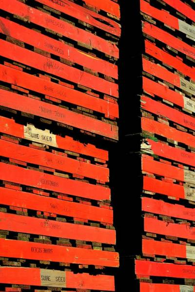 Photograph - Sure Seed Pallets by Jerry Sodorff