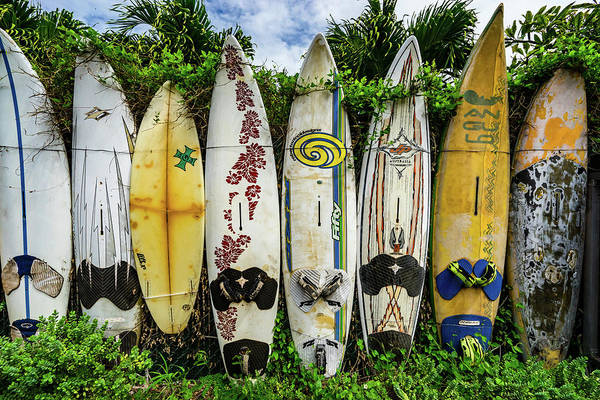 Photograph - Surfboard Fence by Christopher Johnson