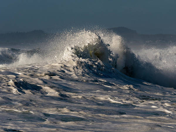 Photograph - Surfing The Sunlight by Robert Potts