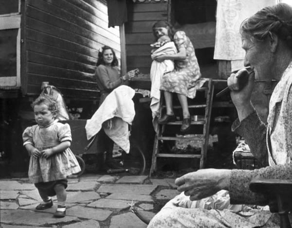 Photograph - Surrey Romanies by Erich Auerbach