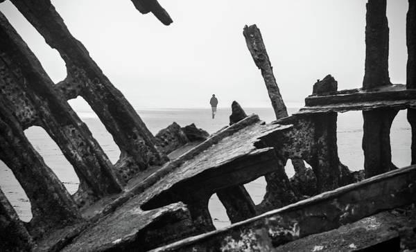 Photograph - Survivor by Kristopher Schoenleber