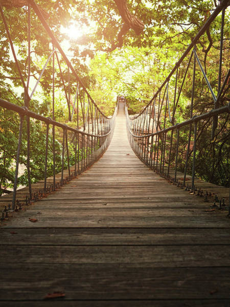 Vertical Perspective Photograph - Suspension Bridge by Marilyn Nieves