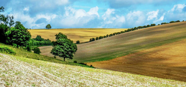 Wall Art - Photograph - Sussex, English Countryside, Rolling Hills With Golden Crops Gro by Gill Copeland