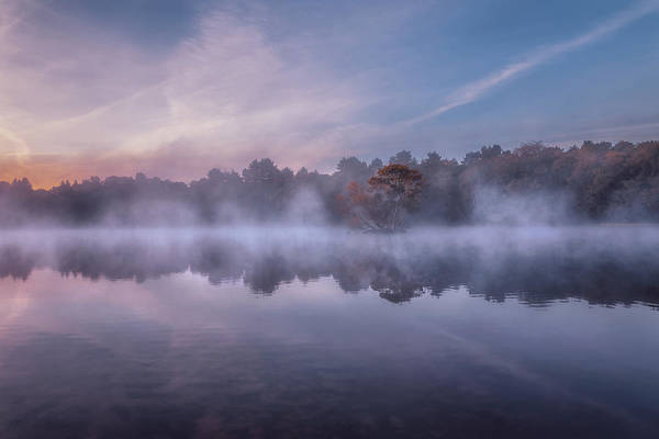 Photograph - Sutton Park Sunrise No 5 by Chris Fletcher