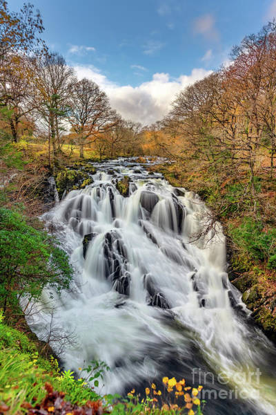Wall Art - Photograph - Swallow Falls Snowdonia by Adrian Evans
