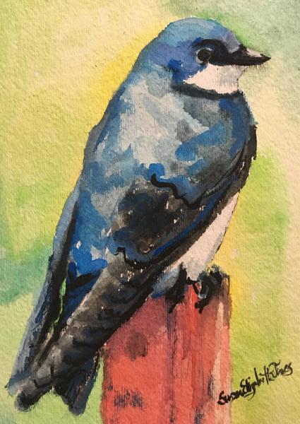 Wall Art - Painting - Swallow by Susan Elizabeth Jones