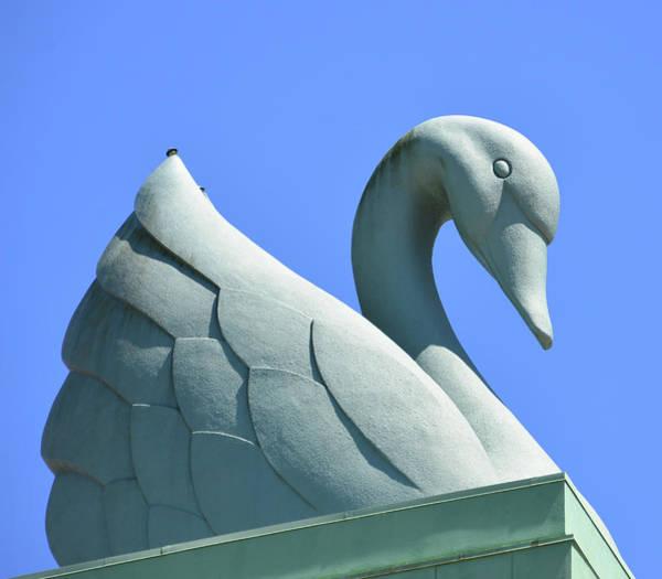 Wall Art - Photograph - Swan At Disney's Swan Resort by David Lee Thompson