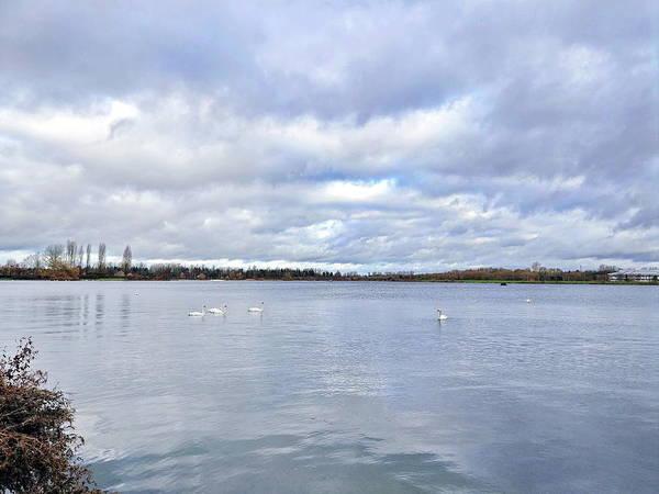 Wall Art - Digital Art - Swans Lake And Sky #1 by Boyd Carter