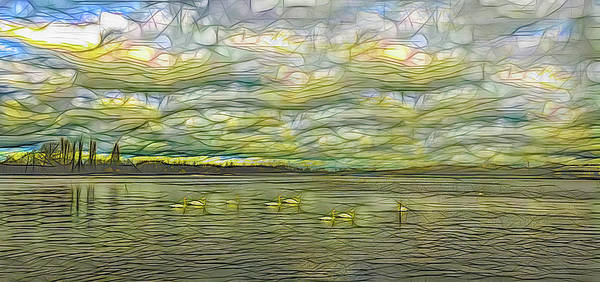Photograph - Swans On A Pond Abstract by Floyd Snyder