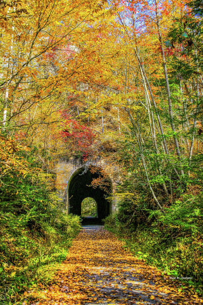 Photograph - Swede Tunnel by Dale R Carlson