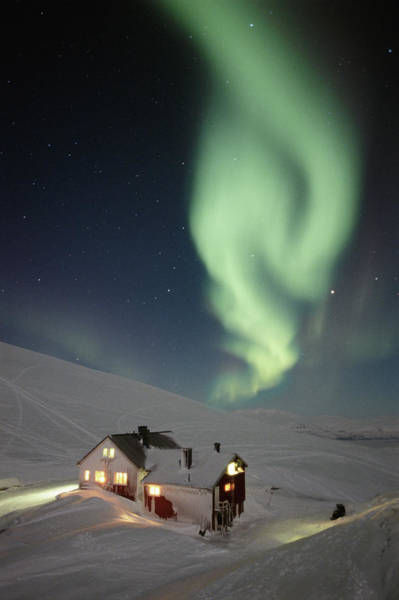 Log House Photograph - Sweden, Lapland, Illuminated Cabin In by Peter Lilja