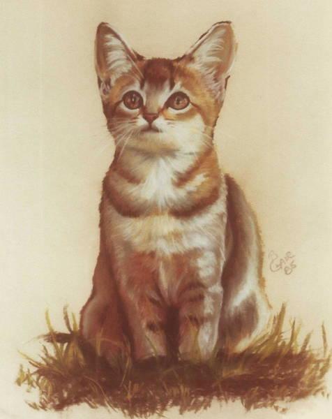 Pastel - Sweet Kittie by Barbara Keith