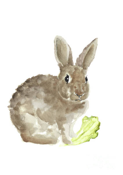 Wall Art - Painting - Sweet Light Brown Rabbit Eating Lettuce Watercolor by Joanna Szmerdt