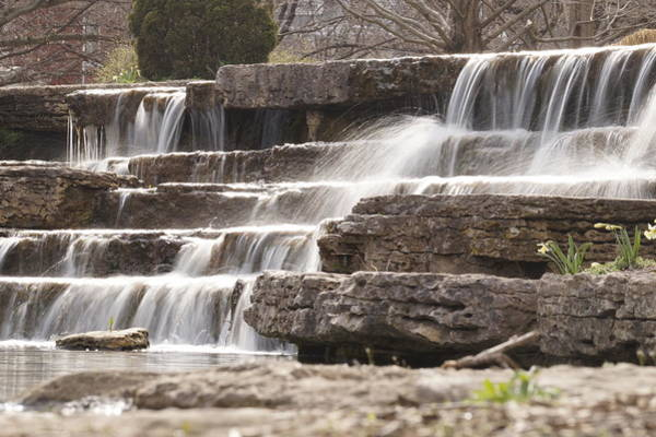 Wall Art - Photograph - Sweet Spring by Beth Collins