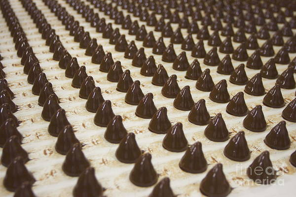 Wall Art - Photograph - Sweets On A Chocolate Factory Conveyor by Photowind