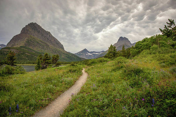 Photograph - Swiftcurrent Lakeside Path  by Harriet Feagin
