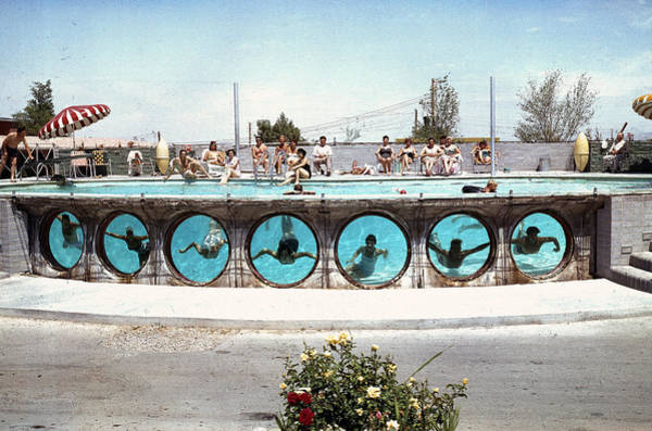 Human Interest Photograph - Swimming In Las Vegas by Loomis Dean
