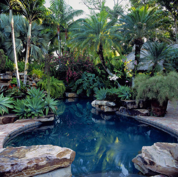 Hanging Rock Photograph - Swimming Pool Surrounded By Tropical by Richard Felber