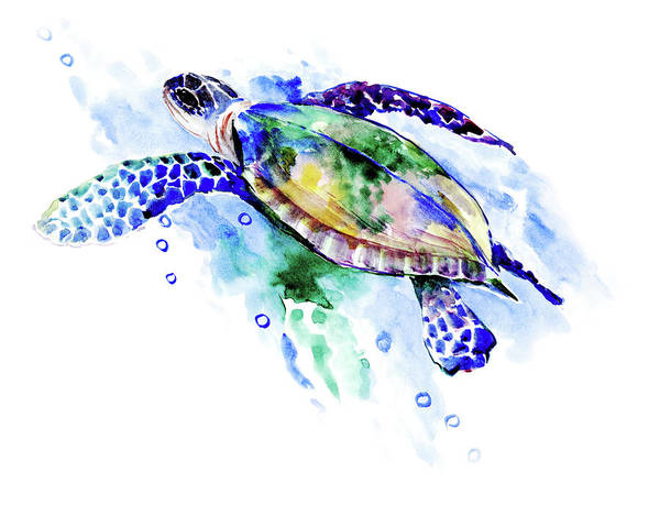 Wall Art - Painting - Swimming Sea Turtle  by Suren Nersisyan