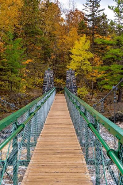 Photograph - Swinging Bridge In Autumn by Susan Rydberg