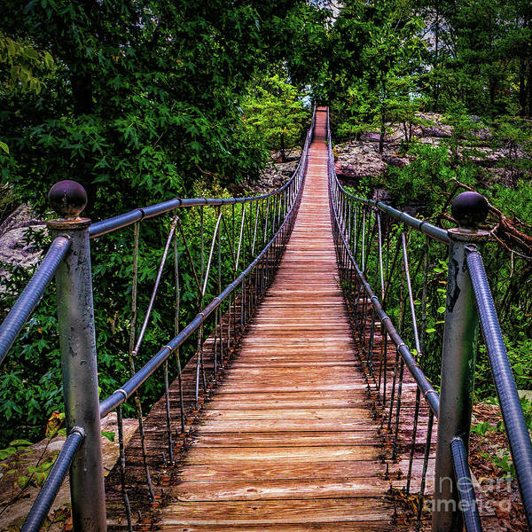 Photograph - Swng Bridge by Nick Zelinsky