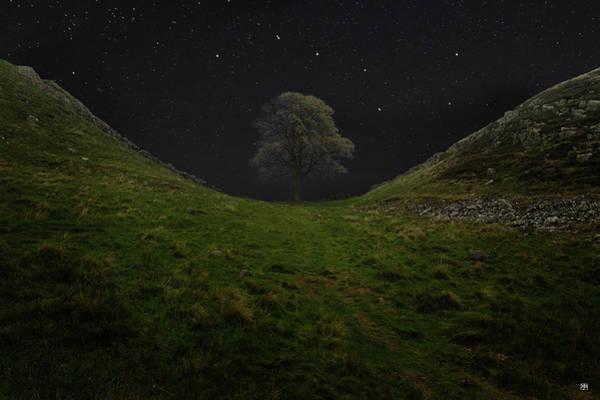 Photograph - Sycamore Gap Stars by John Meader