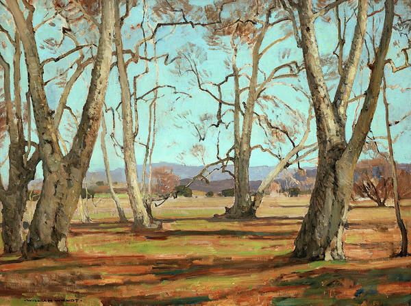 Sycamore Painting - Sycamores by William Wendt